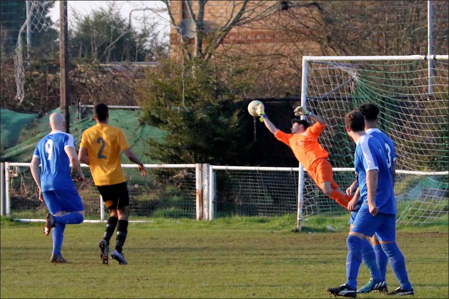 The returning Rob Partington makes a good save